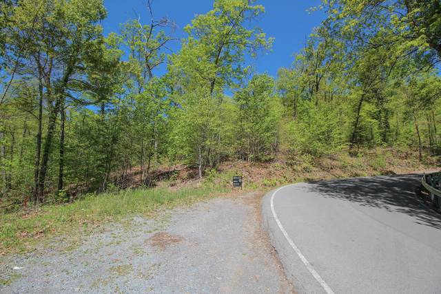 Lot 128 Bluff Mountain Rd., Sevierville, TN 37876 (#1151492) :: Billy Houston Group