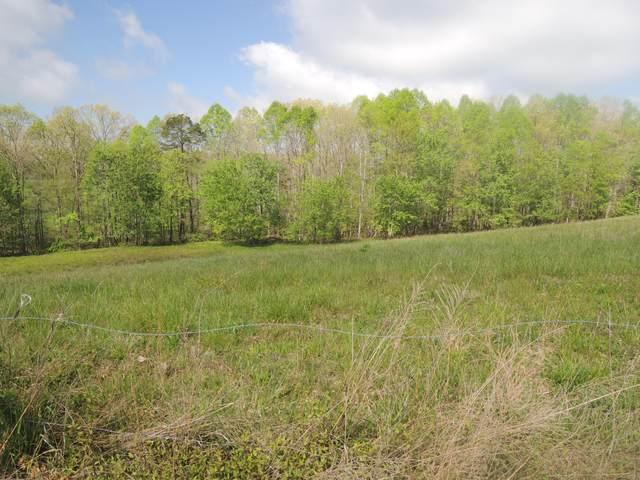 Oak Rd, Jamestown, TN 38556 (#1151509) :: Billy Houston Group