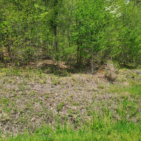 Lot 96 Whistle Valley Rd, New Tazewell, TN 37825 (#1151553) :: Realty Executives Associates
