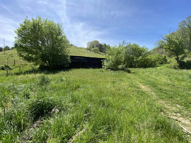 1874 Blue Hollow Rd, Rose Hill, VA 24281 (#1151656) :: Billy Houston Group