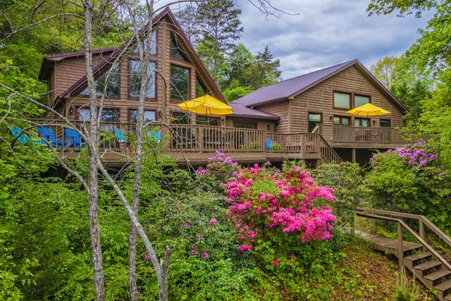 943 E Norris Point Rd, LaFollette, TN 37766 (#1151771) :: Tennessee Elite Realty