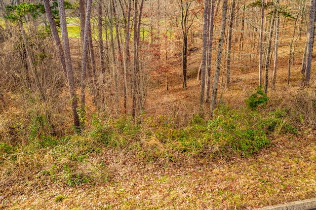 Lot 140 Tumbleweed Tr, Rutledge, TN 37861 (#1151855) :: Cindy Kraus Group | Realty Executives Associates
