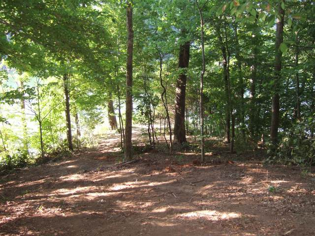 Lot 50 Mountain Shores Rd, New Tazewell, TN 37825 (#1151990) :: Cindy Kraus Group | Realty Executives Associates