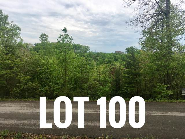 Lot 100 Flagstone Loop, New Tazewell, TN 37825 (#1152058) :: Cindy Kraus Group | Realty Executives Associates