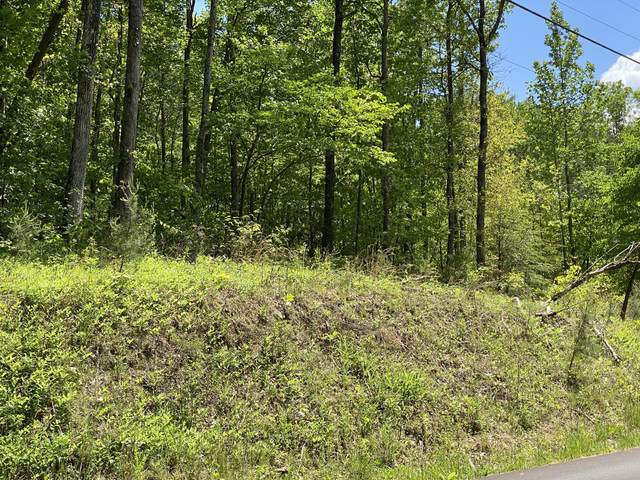 Lot 59 Alpine Drive, Sevierville, TN 37876 (#1152060) :: Shannon Foster Boline Group