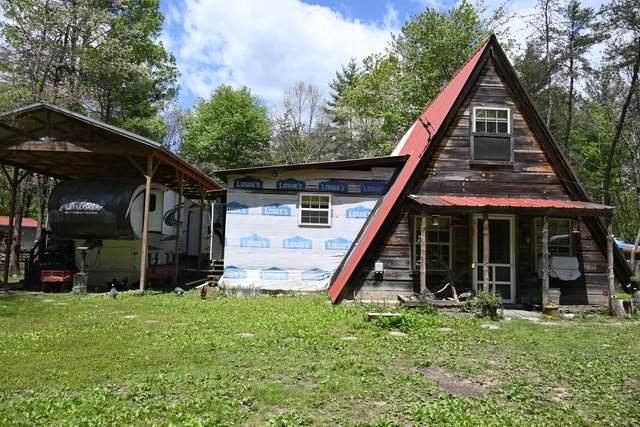 130 Paradise Lane, Deer Lodge, TN 37726 (#1152093) :: Cindy Kraus Group | Realty Executives Associates