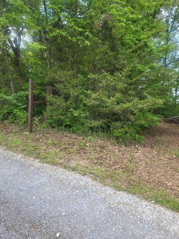 Selma Ave, Knoxville, TN 37914 (#1152117) :: A+ Team