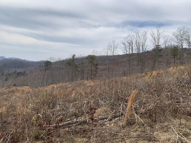 Off- Tower Rd, Tazewell, TN 37879 (#1152127) :: Realty Executives Associates