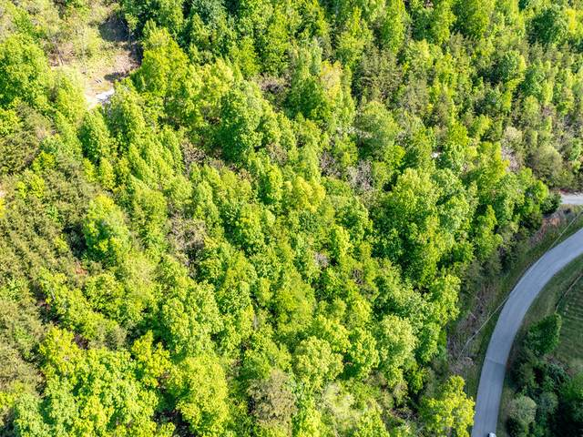 Lot 594 Whistle Valley Rd, New Tazewell, TN 37825 (#1152231) :: Cindy Kraus Group | Realty Executives Associates