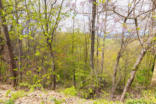 1830 Billard Way, Sevierville, TN 37876 (#1152286) :: JET Real Estate