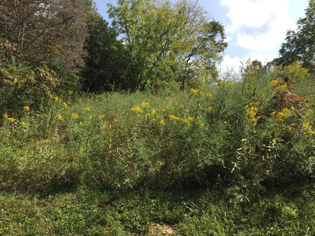 8,9,10 Jd Farm Lots 8,9,10 Rd, Tellico Plains, TN 37385 (#1152392) :: Catrina Foster Group