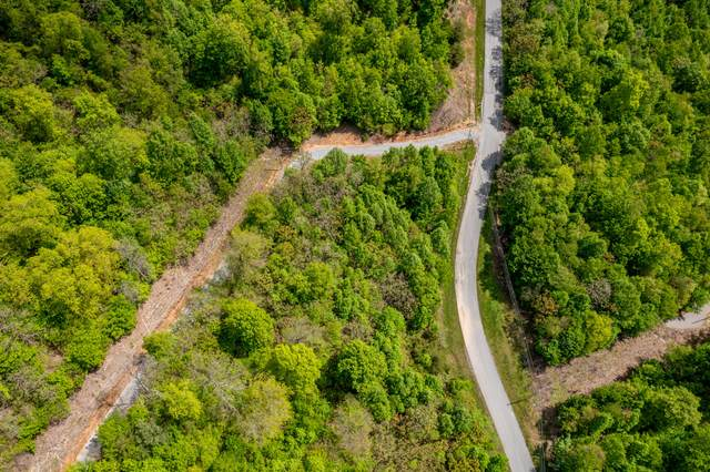 Lot 620 Chimney Rock Rd, New Tazewell, TN 37825 (#1152393) :: Catrina Foster Group