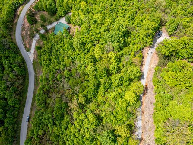 Lot 622 Chimney Rock Rd, New Tazewell, TN 37825 (#1152400) :: Catrina Foster Group