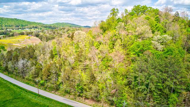Walker Ford Rd, Maynardville, TN 37807 (#1152412) :: Cindy Kraus Group | Realty Executives Associates