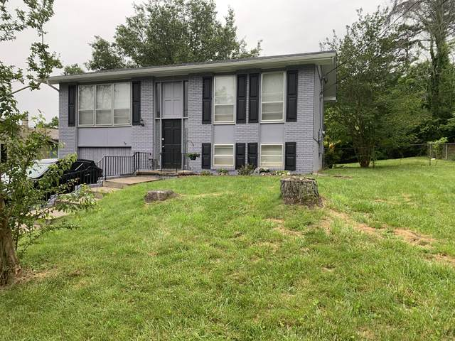 6139 Cougar Drive, Knoxville, TN 37921 (#1152477) :: Shannon Foster Boline Group