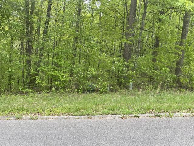 Lot 1 Barrington Drive, Rockwood, TN 37854 (#1152505) :: Cindy Kraus Group | Realty Executives Associates