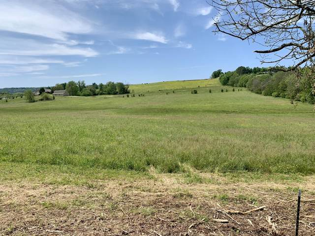 Lot 4 Mccleary Rd, Sevierville, TN 37876 (#1152549) :: The Terrell-Drager Team