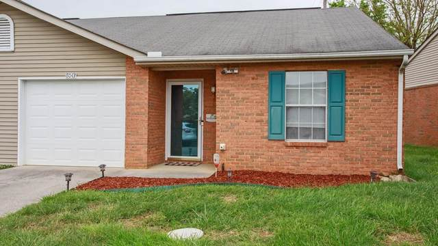8043 Intervale Way, Powell, TN 37849 (#1152589) :: Cindy Kraus Group | Realty Executives Associates