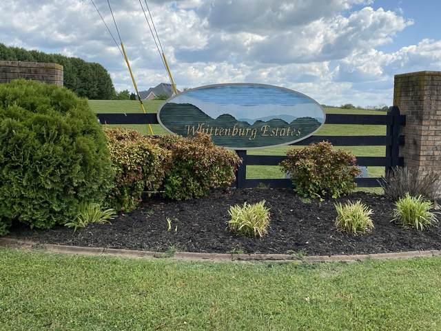 Lot 40 Nina Delozier Rd, Maryville, TN 37804 (#1152594) :: Adam Wilson Realty