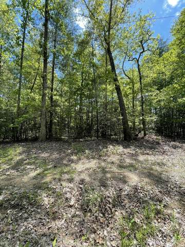 Lot 8 Doyle Garrison Lane, Grandview, TN 37337 (#1152623) :: Cindy Kraus Group | Realty Executives Associates