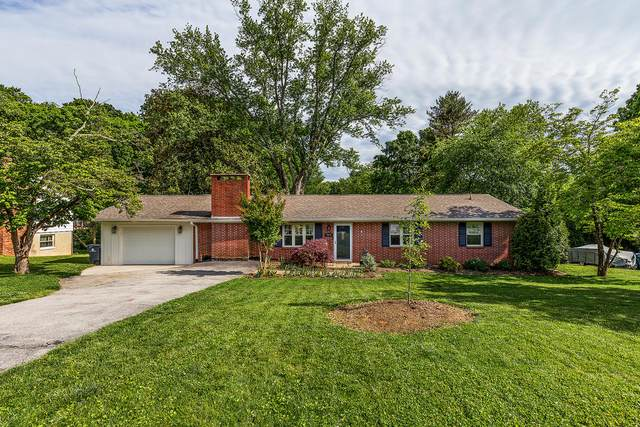 7912 Livingston Drive, Knoxville, TN 37919 (#1152772) :: Billy Houston Group