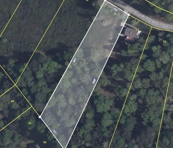 Pinnacle Point Way Way, Sharps Chapel, TN 37866 (#1152911) :: JET Real Estate