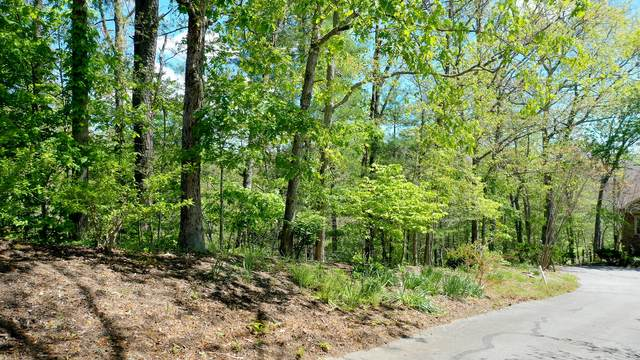 Brighton Terrace, Townsend, TN 37882 (#1152932) :: JET Real Estate