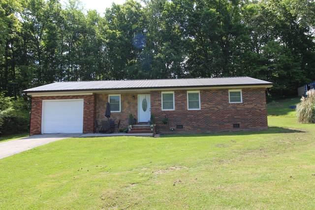 259 Willmore Drive, White Pine, TN 37890 (#1153064) :: Realty Executives Associates Main Street