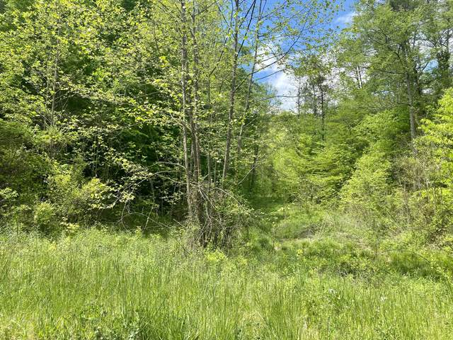 Upper Caney Valley Rd, Tazewell, TN 37879 (#1153102) :: Realty Executives Associates Main Street
