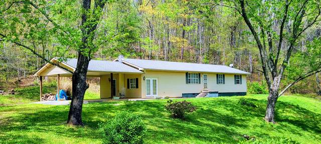 175 Reed Rd Rd, Rockwood, TN 37854 (#1153225) :: Tennessee Elite Realty