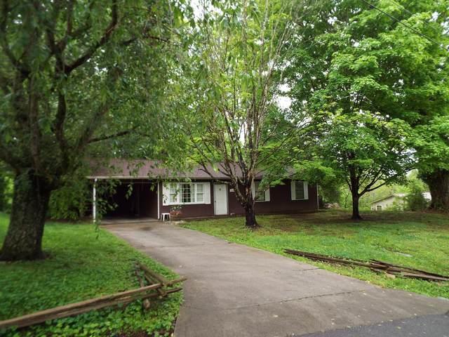 1205 Tramel Rd, Sevierville, TN 37862 (#1153417) :: JET Real Estate