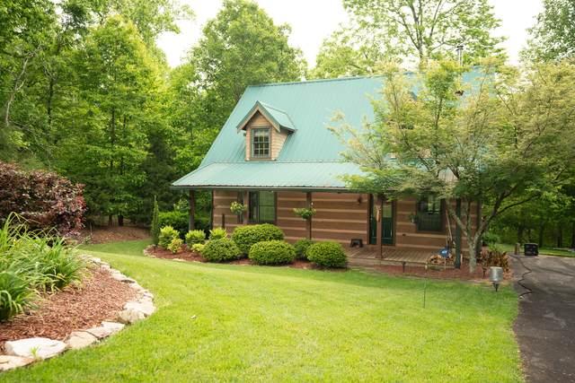 3635 Oak Point Circle, Louisville, TN 37777 (#1153539) :: Cindy Kraus Group | Realty Executives Associates