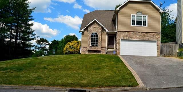 2102 Dana Lane, Knoxville, TN 37923 (#1153698) :: Catrina Foster Group