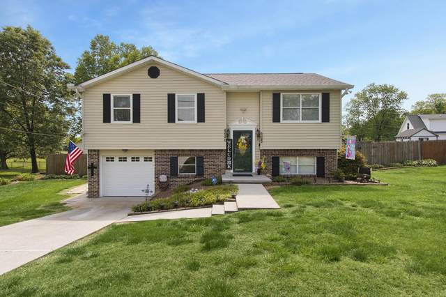 8620 Royal Oaks Drive, Knoxville, TN 37931 (#1153729) :: JET Real Estate
