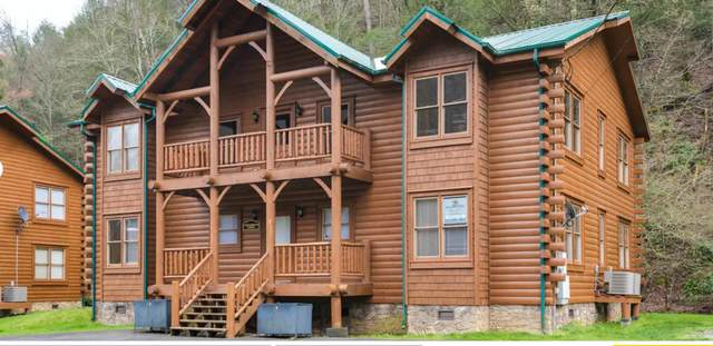 307 Caney Creek Rd, Pigeon Forge, TN 37863 (#1153741) :: JET Real Estate