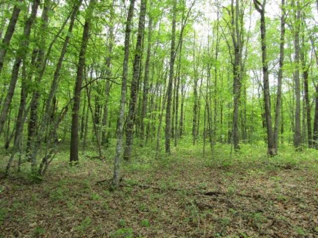 Lot 52 Sycamore Bend, Monterey, TN 38574 (#1153803) :: JET Real Estate