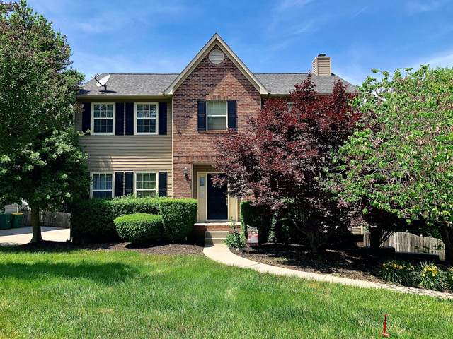 9236 Countryway Dr Drive, Knoxville, TN 37922 (#1153814) :: Billy Houston Group