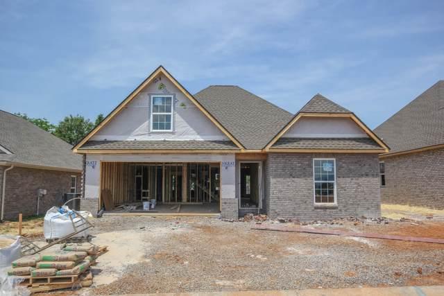 217 Sand Hills Drive, Maryville, TN 37801 (#1153890) :: JET Real Estate