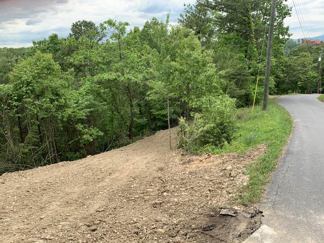 Engle Town Rd, Sevierville, TN 37862 (#1154177) :: Shannon Foster Boline Group