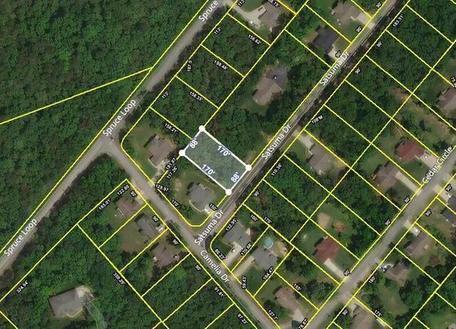 Satsuma Drive, Crossville, TN 38555 (#1154243) :: JET Real Estate