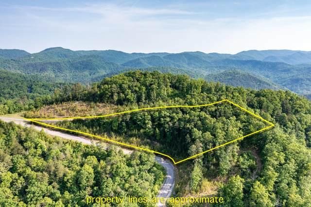 Longhunter Lane, Sevierville, TN 37862 (#1154289) :: Tennessee Elite Realty