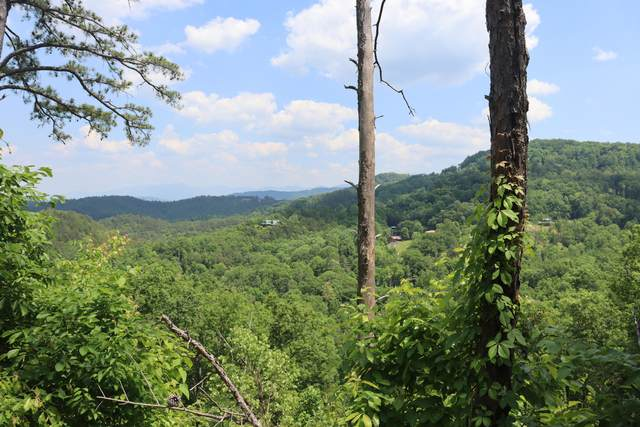 3273 Huckleberry Way, Sevierville, TN 37862 (#1154355) :: The Terrell-Drager Team