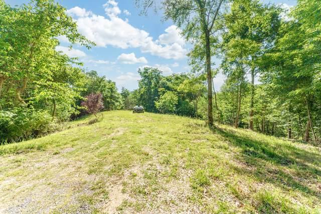 Virginia Court, Baneberry, TN 37890 (#1154478) :: JET Real Estate