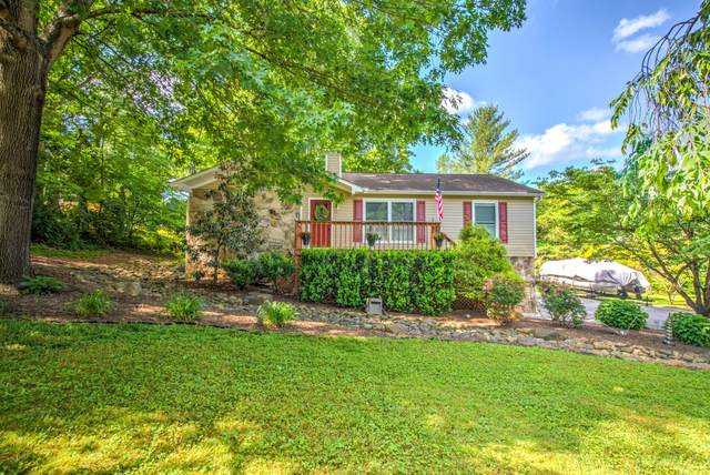7421 Foxhaven Rd, Knoxville, TN 37918 (MLS #1154576) :: Austin Sizemore Team