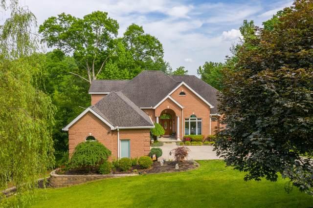 136 Bluegreen Way, Rockwood, TN 37854 (#1154618) :: Tennessee Elite Realty