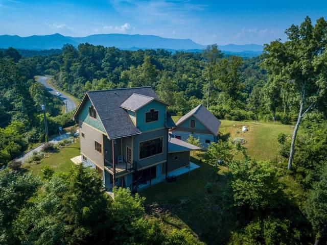 1507 Tranquility Tr, Dandridge, TN 37725 (#1154636) :: Tennessee Elite Realty