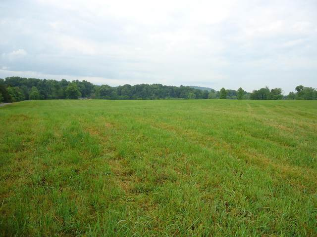N Highway 411, Englewood, TN 37329 (#1154735) :: Catrina Foster Group