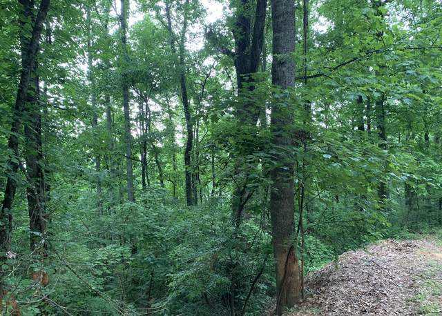 Lot 48 Twin City Way, Pigeon Forge, TN 37863 (#1154851) :: The Cook Team