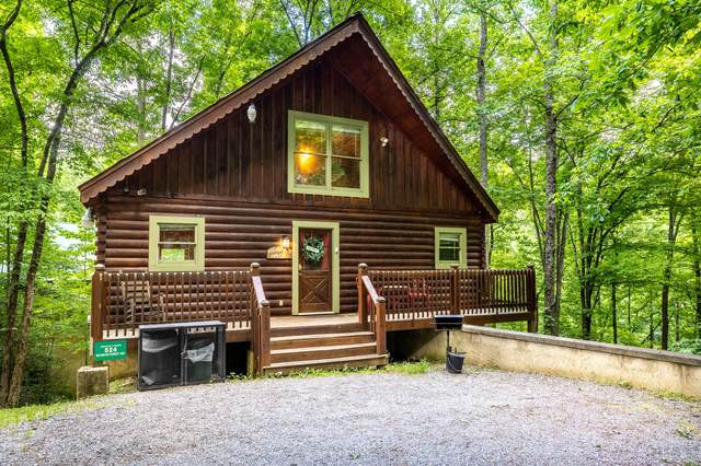 524 Wildwood Forest Way, Sevierville, TN 37876 (#1154944) :: Tennessee Elite Realty