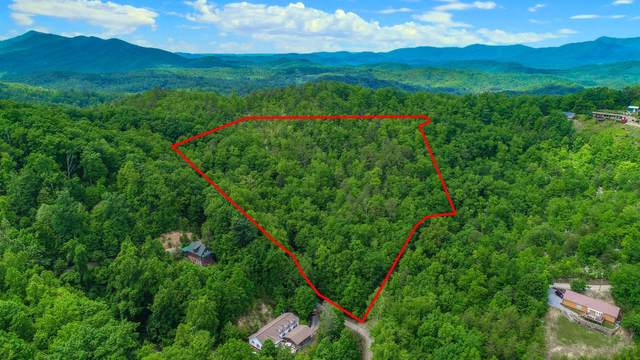 6.28 Acres Costner Rd, Cosby, TN 37722 (#1154990) :: Billy Houston Group